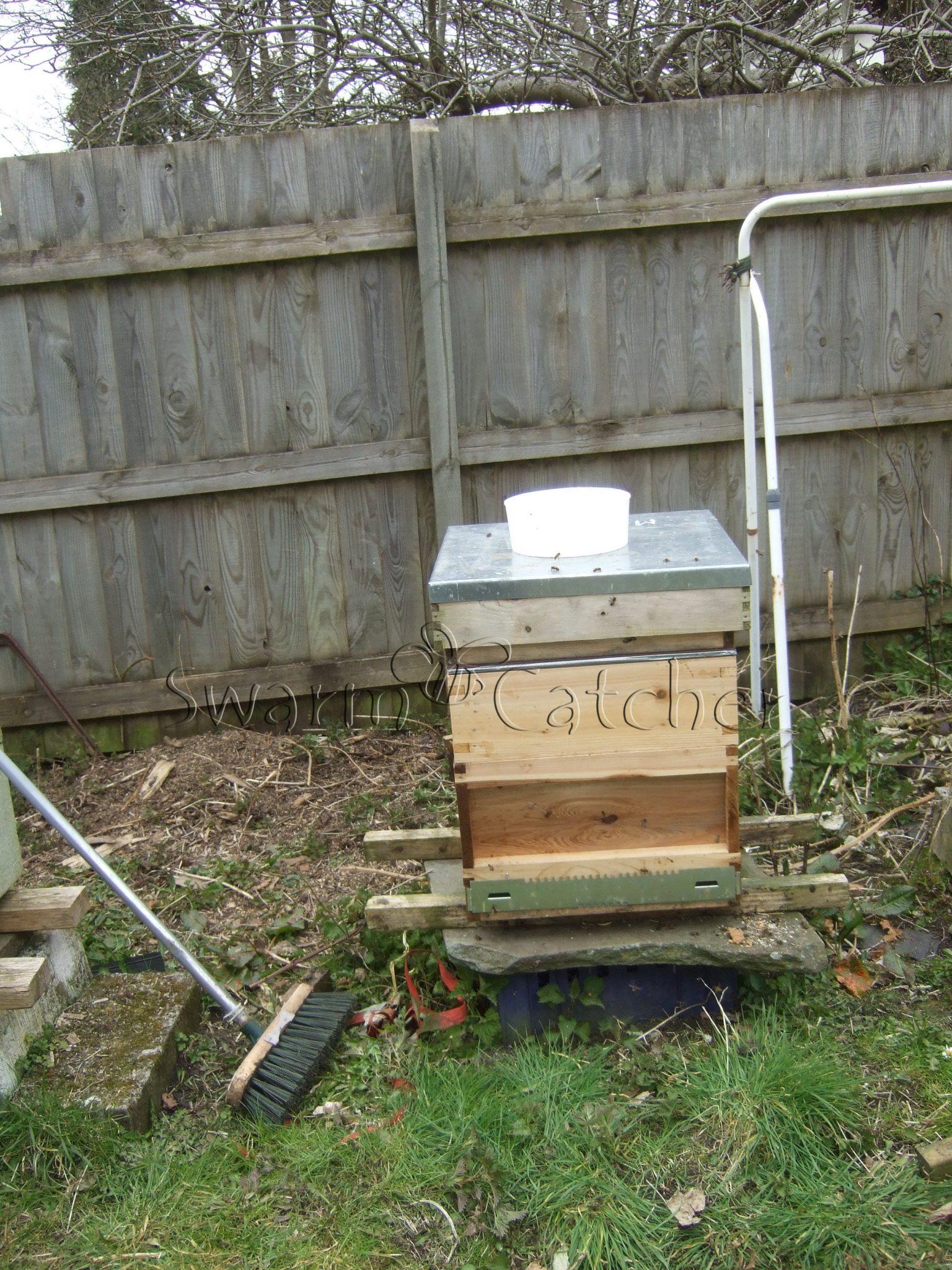 swarmcatcher.co.uk