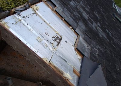 Bruton Somerset bee nest roof cutout 03